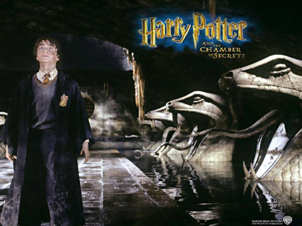 essay harry potter chamber secrets