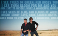 Jensen & Jared - jensen-ackles wallpaper