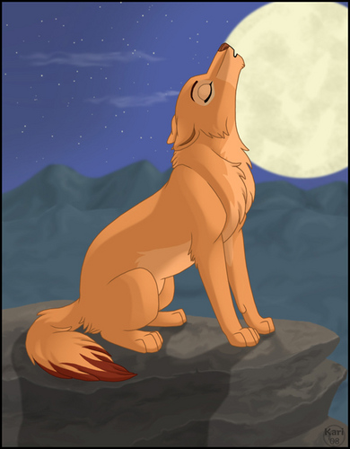 Wolf Nala
