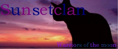 World of Warriors wallpaper probably with a sunset, a sign, and a portrait called Sunsetclan