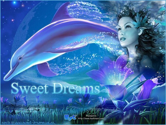 Sweet Dreams - Images