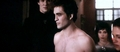 The Many Faces Of Shirtless Edward! - twilight-series photo