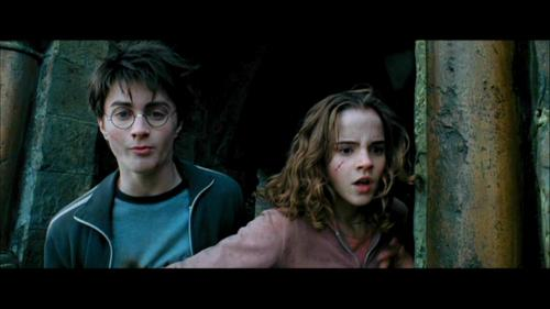 Harry and Hermione kertas dinding with a sign called The Prisoner of Azkaban