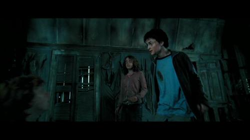 harry y hermione fondo de pantalla entitled The Prisoner of Azkaban