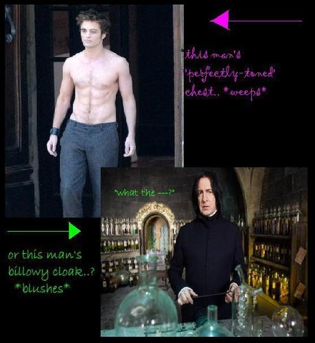 Harry Potter Vs. Twilight wolpeyper possibly with a sign and a kalye called The naked vs. The well-dressed..