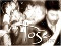 Toše Proeski - tose-proeski wallpaper