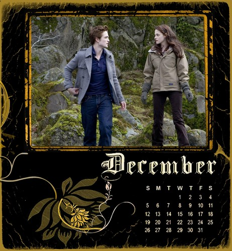Twilight/New Moon Calendar 2010-December