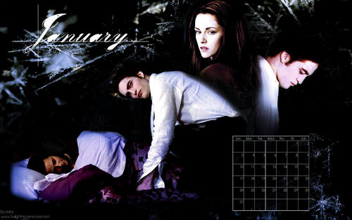 Twilight Saga 2010 Desktop 壁纸 Calendar(from novel noviee twilight)
