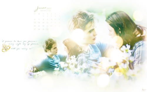 Twilight Saga 2010 Desktop Обои Calendar(from novel noviee twilight)