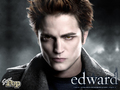 twilight 4444 - twilight-movie wallpaper