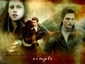 ღ Edward & Bella ღ  - twilight-series photo