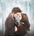 ღ Edward & Bella ღ  - twilight-series photo