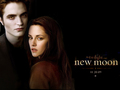~ New Moon ~ - twilight-series photo