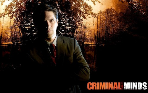 mntes criminales fondo de pantalla possibly containing a business suit, a concert, and a calle titled Aaron Hotchner