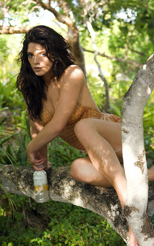 Ashley Greene :D SoBe