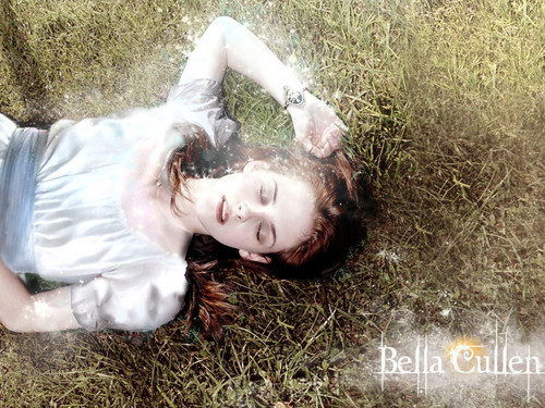Bella Cullen - Breaking Dawn