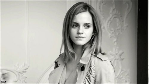 Emma Watson wallpaper possibly with a trench coat called Burberry Spring 2010 Campaign Photo Shoot
