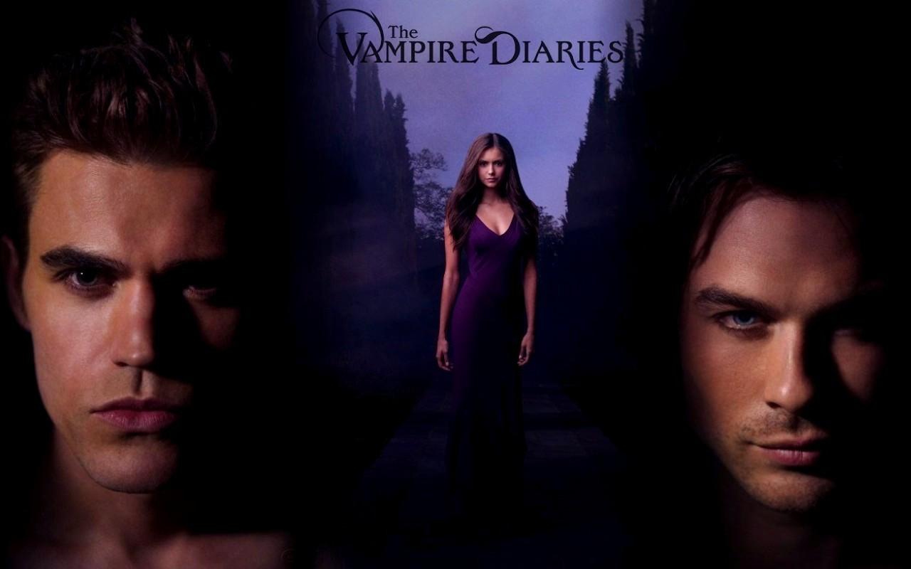 The Vampire Diaries TV Show Damon Elena Stefan