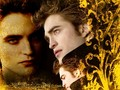 EDWARD CULLEN - vampires wallpaper