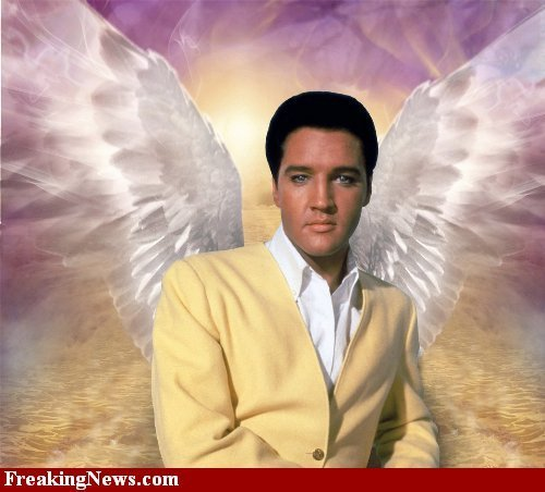 For My Dear Friend Paola ,Elvis The ángel <3