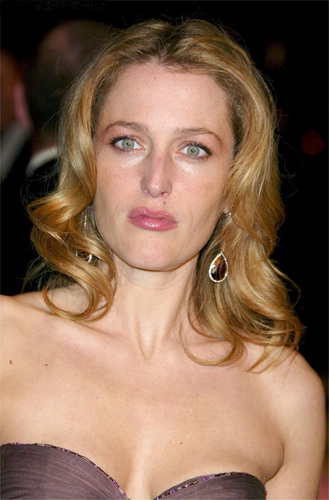 Gillian at Vanity Fair Oscar Party