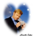 Horatio Caine - csi-miami fan art