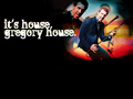 house-md - House MD  wallpaper