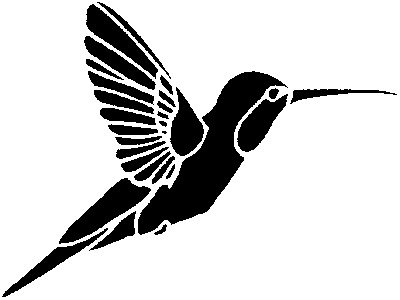 Humming Bird Portrait