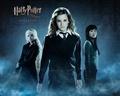 Luna,Hermione,Cho