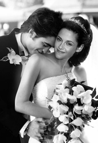 edward y bella fondo de pantalla containing a bouquet, a rose, and a camellia titled Manips