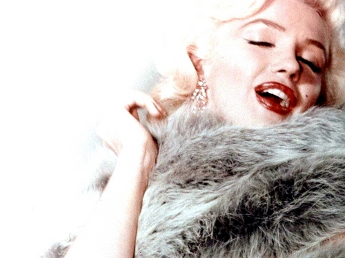 Marilyn Monroe wallpaper possibly with a fur coat titled Marilyn