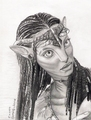 Neytiri drawing - avatar fan art