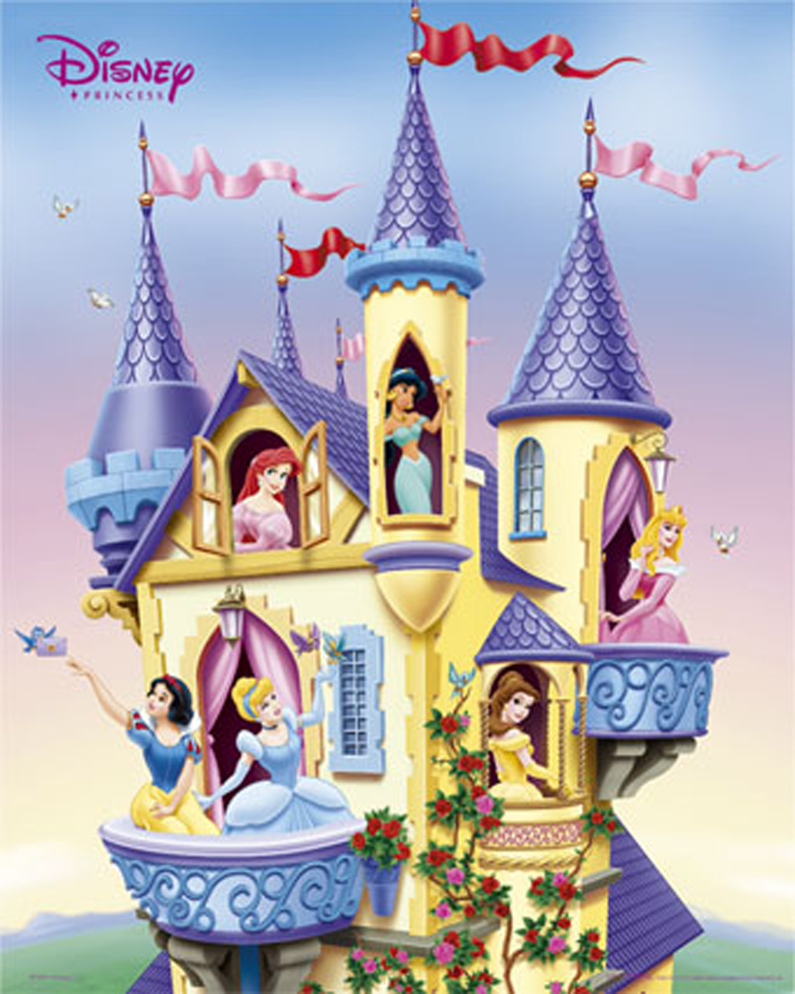 disney princess images princesses in castle hd wallpaper and background photos 9771507. Black Bedroom Furniture Sets. Home Design Ideas