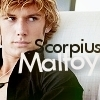 Si t'as pas d'amis, prend un Curly Rose-Scorpius-rose-and-scorpius-9735227-100-100