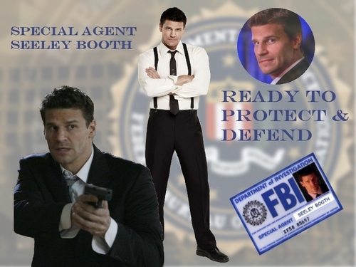 Seeley Booth پیپر وال with a business suit and a well dressed person titled Seeley Booth Special Agent