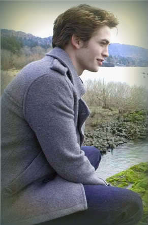 The Perfect Edward Cullen