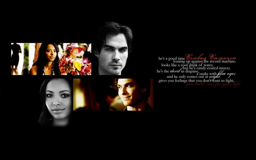 Wallpaper - damon-and-bonnie Wallpaper