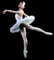 ballet pics