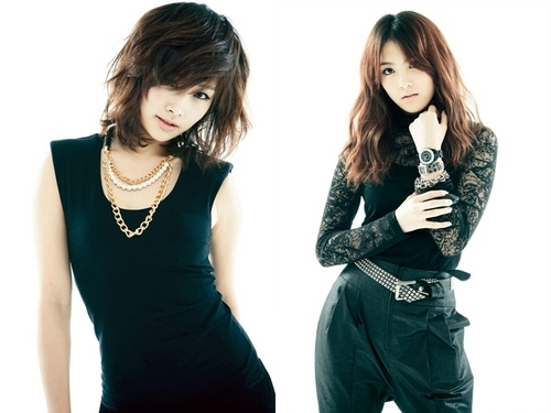 KARA 바탕화면 with a well dressed person called kara