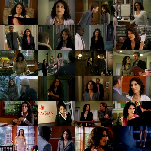 6 Seasons of Lisa Cuddy