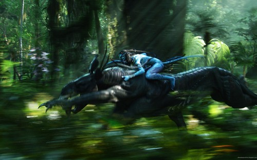 Avatar images AVATAR  HD wallpaper and background photos