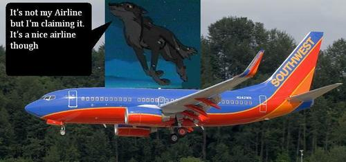 Balto and his own airline