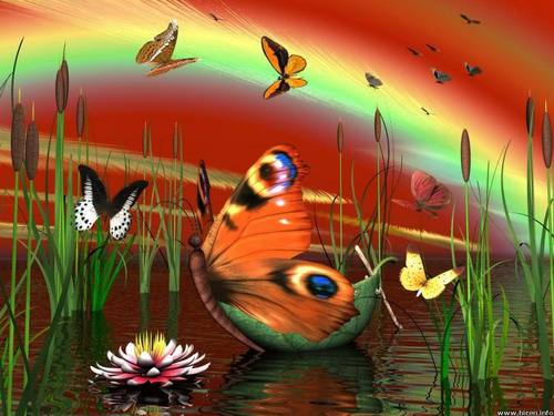 Butterfly Lake - butterflies Wallpaper