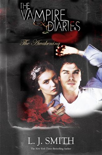 Damon and Elena bookcover