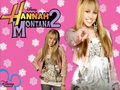 HANNAHmontana the secret pop queen - hannah-montana wallpaper
