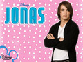 J.O.N.A.S - the-jonas-brothers wallpaper