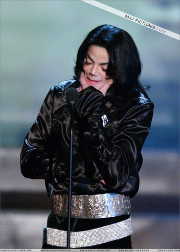 Michael Jakcosn > 2003 - 2005 > Awards > Radio musique Awards