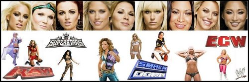 Raw and Smackdown Divas - wwe-raw-divas-vs-smackdown-divas Photo