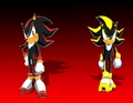 Shadow and Shade  - shadow-the-hedgehog photo