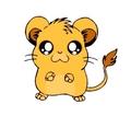 Simba as a Rat